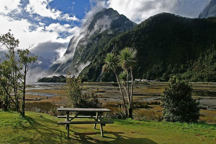 Milford Sound picnic