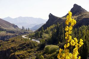 neuseeland queenstown landschaft3