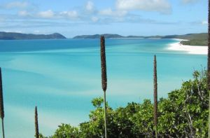 Australien/QLD/Whitsundays-2