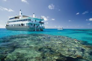 Australien/Queensland/Coral Expeditions/Pelorus Tour/Schnorchelausflug