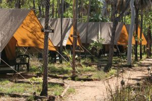 Australien/Kimberleys/Mitchell-Falls-Wilderness-Lodge-Zelte
